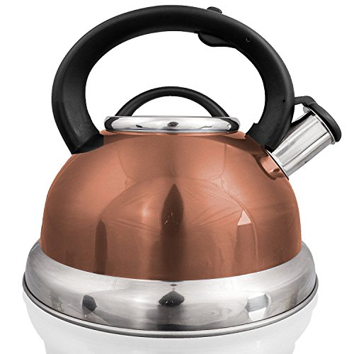 Stainless Steel Whistling Tea Kettle Pot 296 Quart 28 L Coffee Tea Maker
