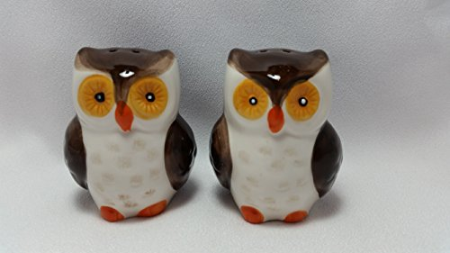 3-d Figural Owl Brown White Salt and Pepper Shakers Set Hand Painted