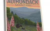 Adirondack-Mountains-New-York-Bears-and-Spring-Flowers-Set-of-4-Ceramic-Coasters-Cork-backed-Absorbent-40.jpg